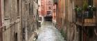 Bologna-Venezia
