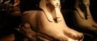 Museo-Egizio-Sfinge