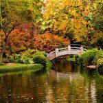 autunno_03