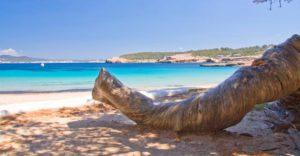 Cala-bassa-Ibiza