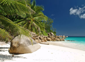 Georgette-Seychelles