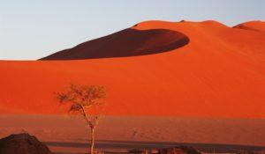 Deserto-rosso
