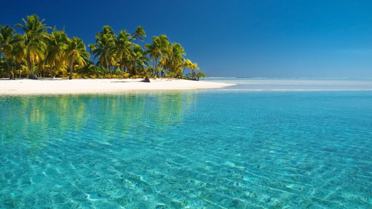Isole Canarie: guida completa
