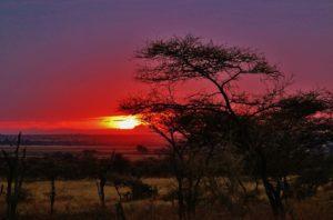 tanzania-meteo
