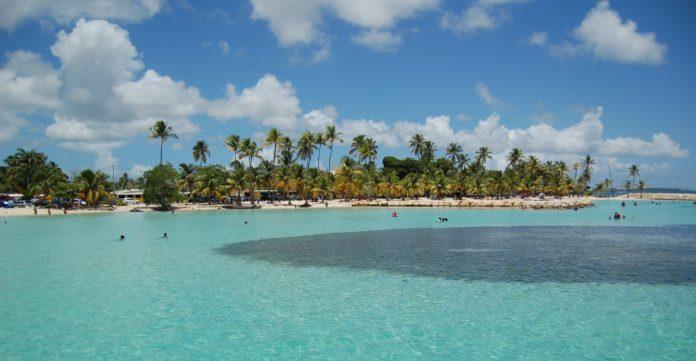Piccole-Antille