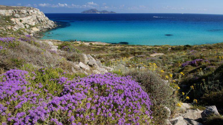 Marettimo: guida completa all'Isola più suggestiva delle Egadi