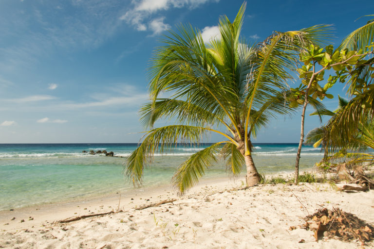 Barbados: la Guida Completa per una vacanza al mare indimenticabile